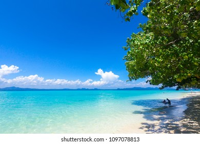 Beautiful summer beach with clear water and blue sky in south of thailand, Koh Kradan. Travel and holiday concept.
