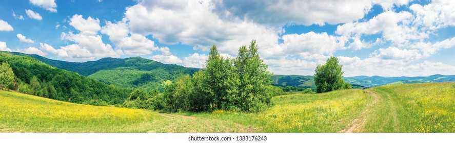 beautiful summer countryside in mountains. wonderful panoramic scenery on a sunny day. country road through rural fields. hills and mountains in the distance. blue sky with fluffy clouds