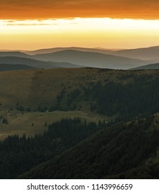 beautiful summer dawn view on European carpathian mountains, hills covered spruces on background golden red sky, beauty world of nature, vertical orientation morning image