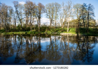 beautiful summer day at the lake, tree reflections in blue water with blue sky above, solitude
