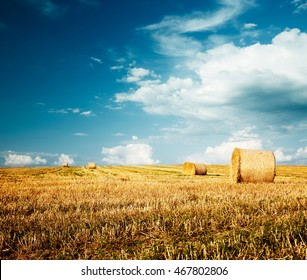 Beautiful Summer Farm Scenery with Haystacks. Field Landscape with Rolls and Sky. Agriculture Concept. Toned Photo with Copy Space.