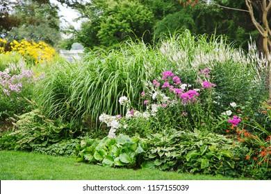 Beautiful summer flowerbeds