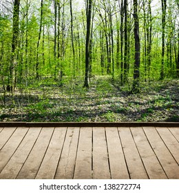 Beautiful summer forest and wood planks floor