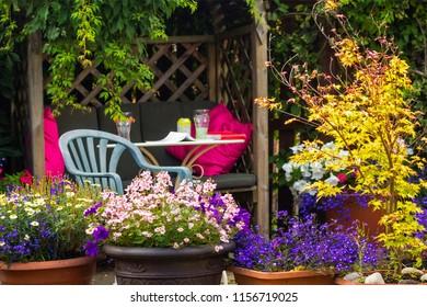 Beautiful, Summer garden with amazing blossom in big flowerpots
