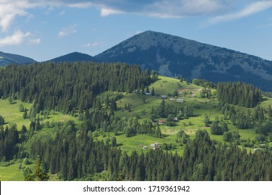 Beautiful summer green landscape of picturesque mountain hills, green woods and countryside village cottages. Ukraine