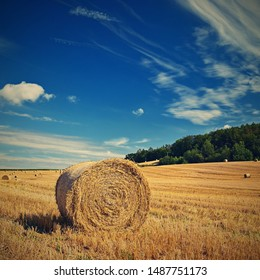 Beautiful summer landscape. Agricultural field. Round bundles of dry grass in the field with bleu sky and sun. Hay bale - haystack.