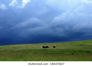 Beautiful summer landscape. Endless green meadow where the harvesting of hay and thunder clouds occurs