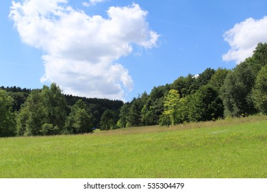 Beautiful summer landscape with forest, meadow and blue sky in Ulm, Baden-Wuerttemberg, Germany.