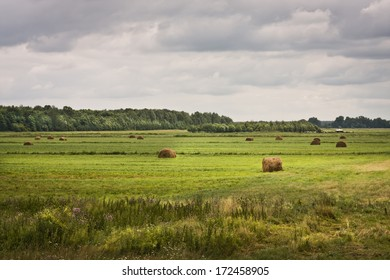 Beautiful summer landscape with green