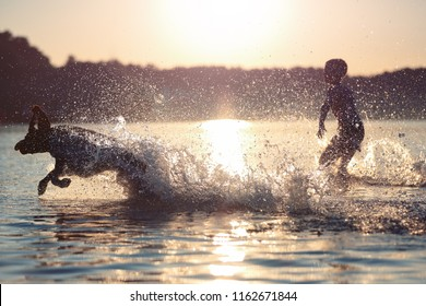 Beautiful summer landscape. A kid is playing with a dog in lake. Water splashes. Sharming sunset. The horizon lights up with orange colors. Happy childhood. Location place Svityaz Lake,Ukraine, Europe