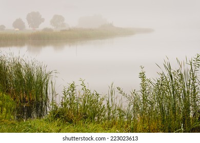 Beautiful summer landscape with a misty morning