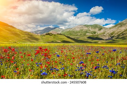 Beautiful summer landscape at Piano Grande (Great Plain) mountain plateau in the Apennine Mountains, Castelluccio di Norcia, Umbria, Italy