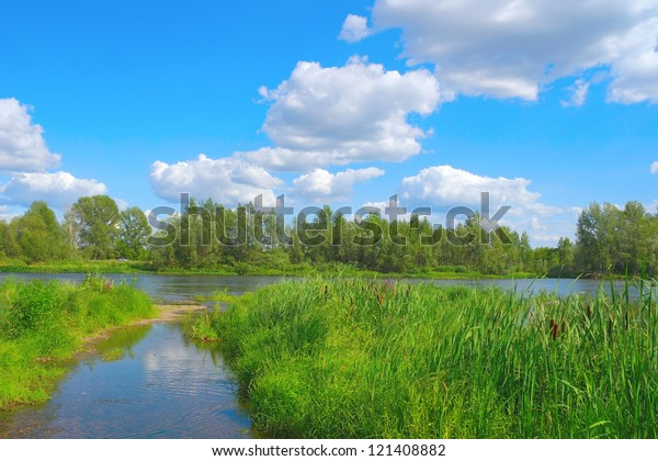 beautiful-summer-landscape-river-forest-
