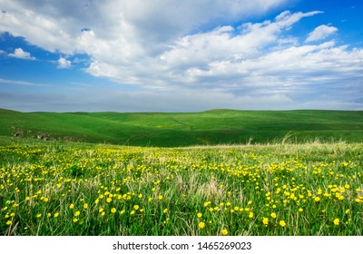 Beautiful summer landscape, yellow flower field on the hills