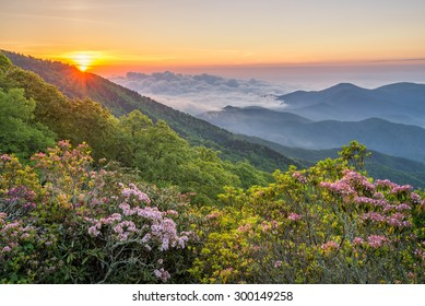 A beautiful summer morning along the Blue Ridge Parkway in western North Carolina.