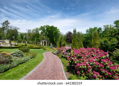 Beautiful summer park with landscape design