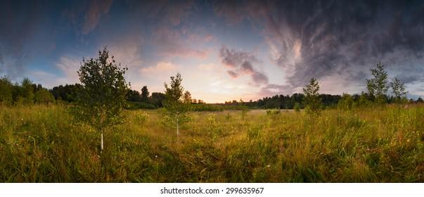 Beautiful summer sun foggy sunset panorama landscape  single tree wild field web banner, for print