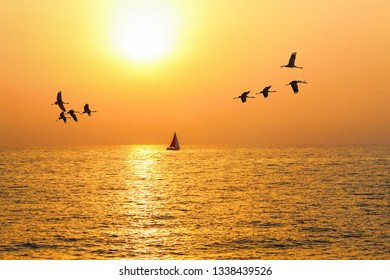 Beautiful summer sunset of calm Mediterranean sea. Migrating birds in the clean sky at yellow sundown. Red sail yacht on a horizon. Relaxing seascape
