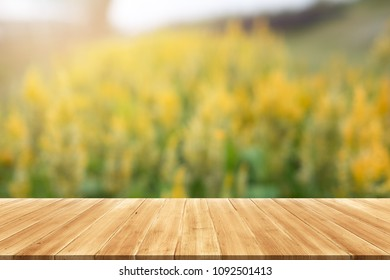 Beautiful sunlight in the autumn forest with wood planks floor, nature background,for display or montage your products.