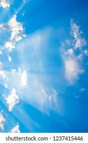 Beautiful sunlight and blue sky.