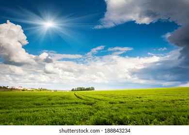 Beautiful sunny day in the field with blue sky. Overcast sky. Ukraine, Europe. Beauty world.
