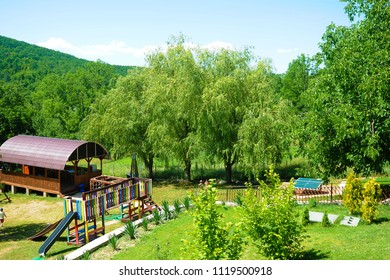 Beautiful sunny day is in mountain landscape. Green valley panoramic. Smart nature,  mountain air. Outdoor recreation. Blooming beautiful colorful rose in park nature background.