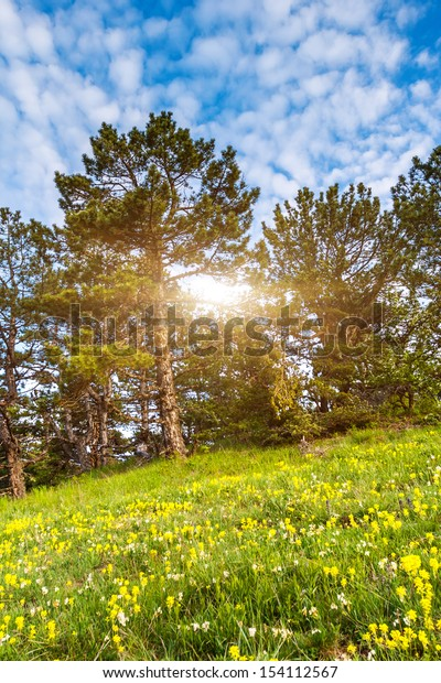 Beautiful sunny day is in mountain landscape. Crimea, Ukraine, Europe. Beauty world.