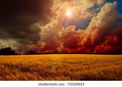 Beautiful sunny day - Nature Landscape - Wide Angle