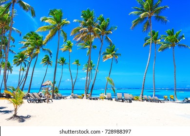 Beautiful sunny day on the beach in Punta Cana, Dominican Republic