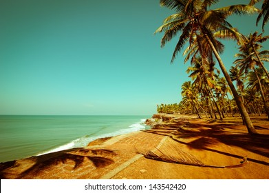 Beautiful sunny day at tropical beach with palm trees. Ocean landscape in vintage style. India