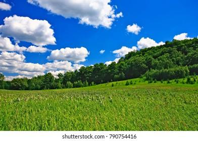 Beautiful sunny July day outdoors at Mono Cliffs Provincial Park along the Niagara Escarpment in Ontario, Canada.