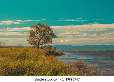 Beautiful sunny landscape with river or lake, lawn or meadow, standalown tree, mountains and horizon line. Peaceful and calm meditative place
