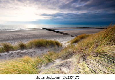 beautiful sunny North sea beach, Zeeland, Netherlands