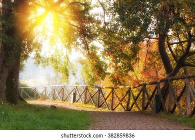 Beautiful sunny park