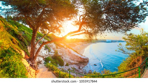 Beautiful sunny seascape. Green trees and grass on Costa Dorada coast line. Summer tropical resort.