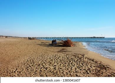 beautiful sunny winter day on the sandy beach of Versilia at Forte dei Marmi. The wharf on the horizon, a little blue sea and a clear sky for good walks