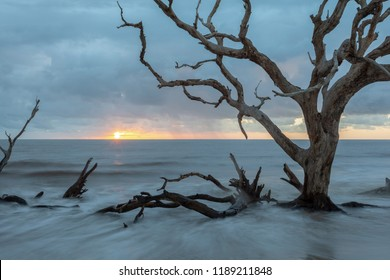 Beautiful sunrise at Driftwood beach