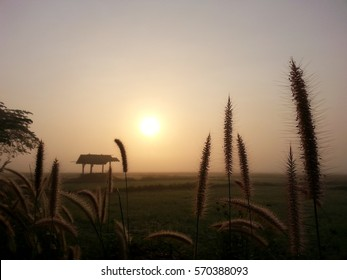 Beautiful sunrise landscape in the morning at country side