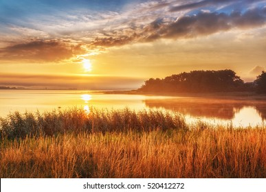 Beautiful sunrise landscape at Northern sea, Sweden. Epic scenery with high grass at foreground and sea, rising in morning sun and dramatic sky and clouds at background.