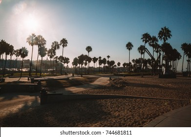 Beautiful sunrise morning over Venice beach in Los Angeles. Green palms by the skate park.