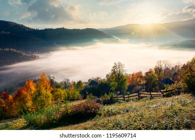 beautiful sunrise in mountain. orchard near the village on hill side. trees in fall foliage. thick fog rise above the valley