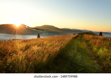 Beautiful sunrise in the mountains. A dirt road running along the tops of the mountains, fog and conifers below, the sun rising from behind the mountains