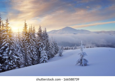 Beautiful sunrise in the mountains in winter. Carpathian mountains, Ukraine, Europe. View of Mount Goverla
