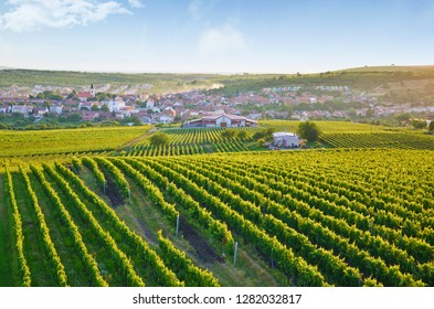 Beautiful sunrise over the picturesque village Velke Pavlovice and nearby vineyards, southern Moravia, Czech Republic. The amazing area is a popular tourist destination mainly for summer vacation.