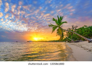 Beautiful sunrise over tropical beach and palm trees in Dominican republic
