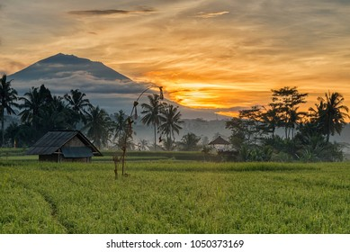 Beautiful sunrise scenery of Mount Agung, Bali Island, Indonesia