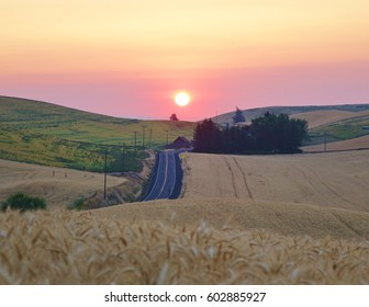 Beautiful sunrise as seen from the middle of a wheat field on the Palouse in eastern Washington state. The scenic highway, state route 272 heads out of Colfax toward a farmhouse & rolling farm fields.