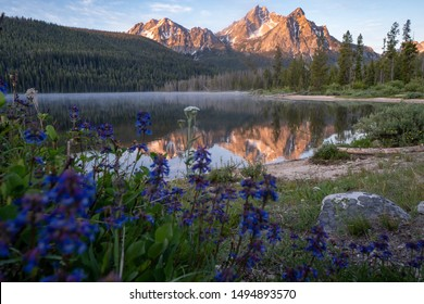 Beautiful sunrise at Stanley Lake in the Sawtooth Mountains of Idaho. Reflection in water with wildflowers