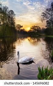 Beautiful sunrise in the Vondelpark in Amsterdam, the Netherlands