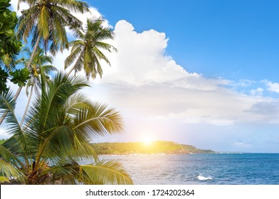 Beautiful sunrise, white clouds in a blue sky. Palm trees and tropical vegetation on the coast, Paradise sandy beach and turquoise waters of the Indian ocean.